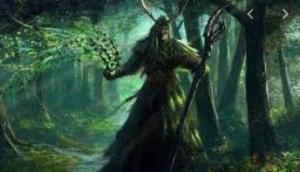 Druid spells 5E